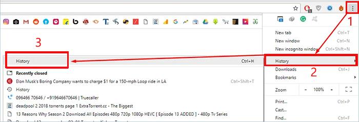 check chrome browsing history on computer