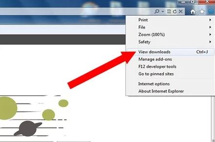 check internet explorer download history on computer