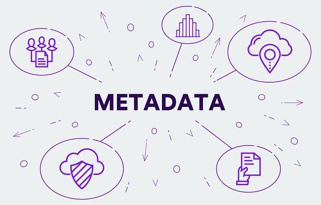 metadata image scaled