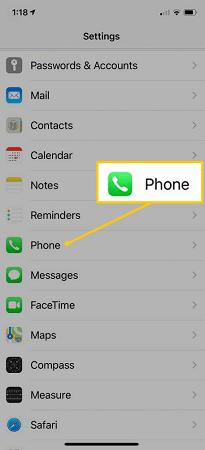 phone option