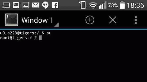 terminal screen