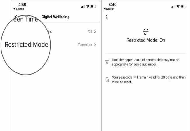 tiktok restricted mode